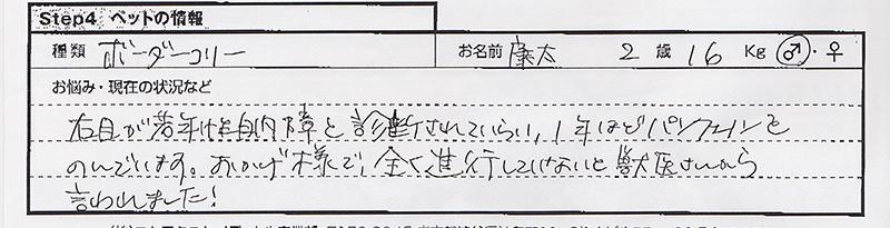 田辺久仁子 康太